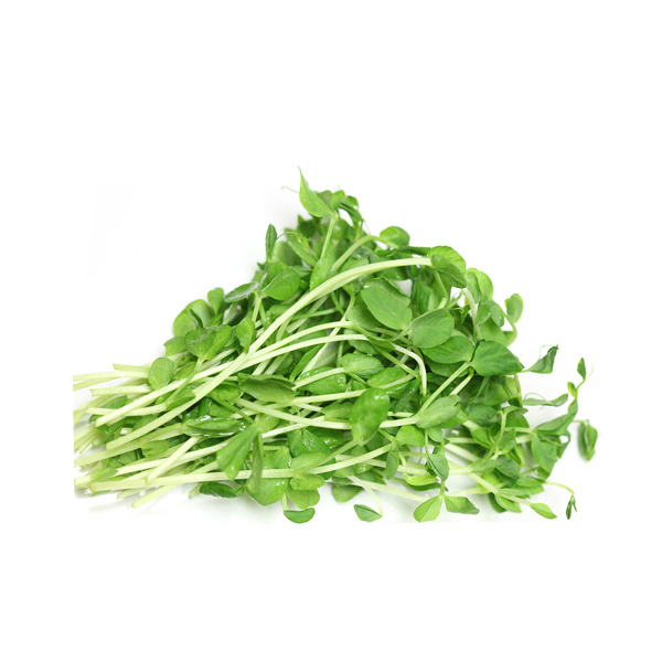 Organic Sprouts, Sunflower - SG