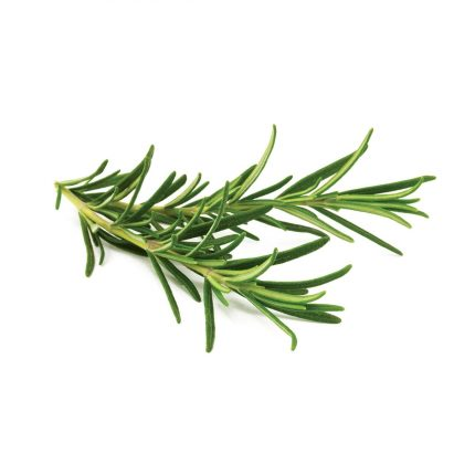 Rosemary 20g Front