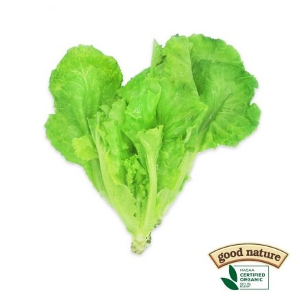 Good Nature Leaf Lettuce